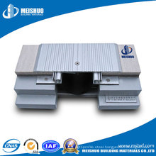 Aluminum Epansion Joint Systems on Floor (MSDSJS)